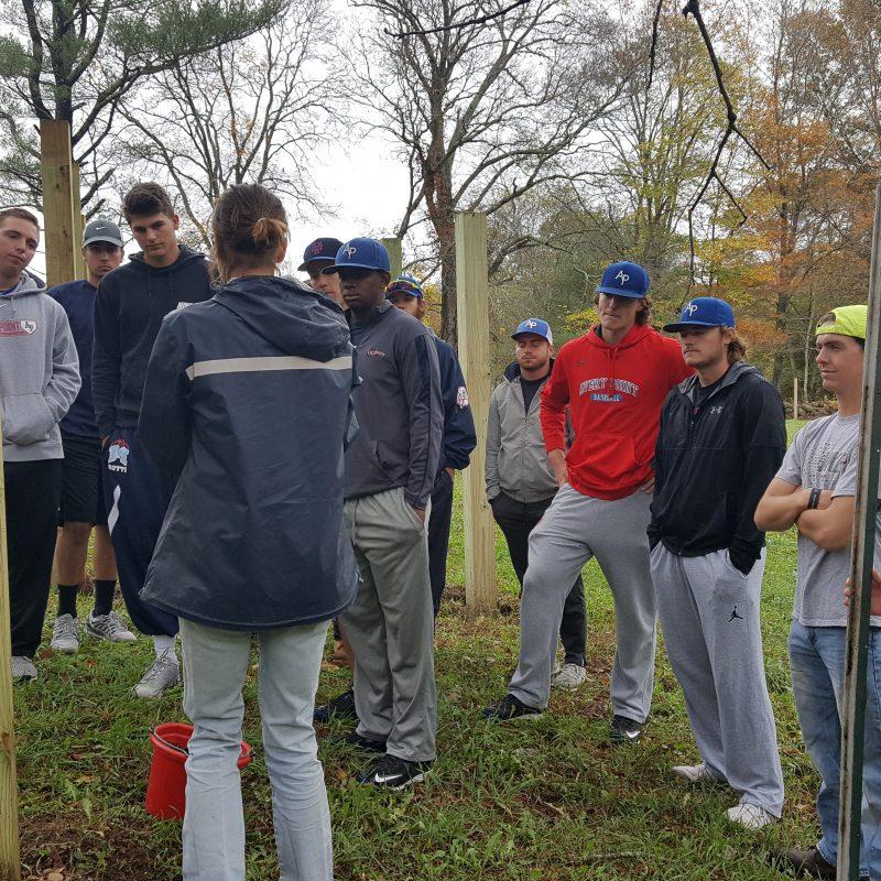 AP Baseball Team at Beech Brook